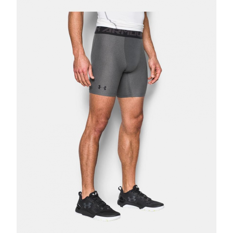 Under Armour 2.0 Long Short Grey